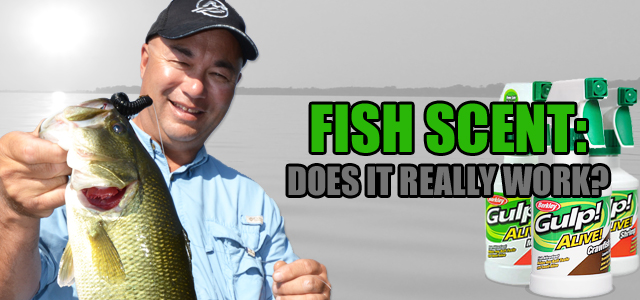 The Truth Behind Fish Scents