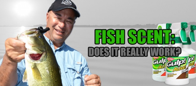 <h3>The Truth Behind Fish Scents</h3><p>Reflecting back on the fishing seminars we have presented at shows across the country, it's easy to remember the most frequently asked question.  People often as whether ...</p>