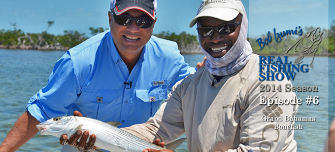 Grand Bahamas Bonefish